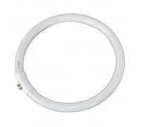 Лампа T5 22W для кольцевой лампы-лупы h10443/h10444